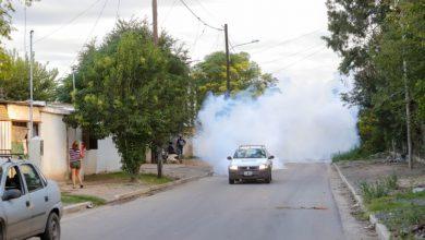 Photo of Confirmaron 5.457 casos de dengue en Tucumán